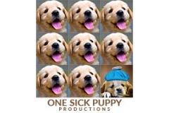 one-sick-puppy