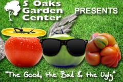 5-oaks-ugly